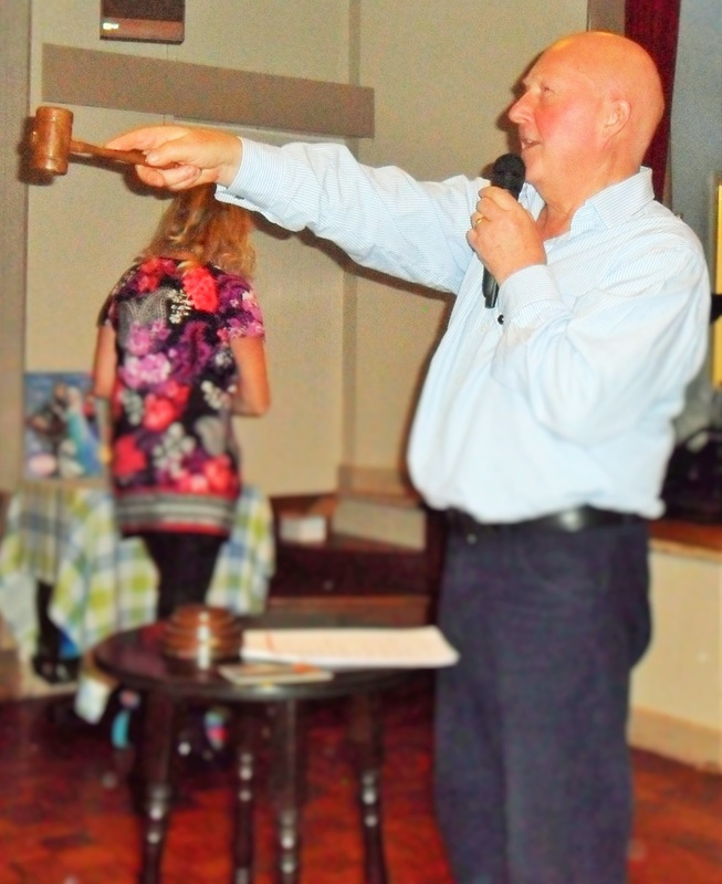 Charity Auctioneer photo